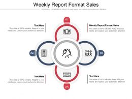 Weekly Report Format Sales Ppt Powerpoint Presentation Outline Ideas Cpb