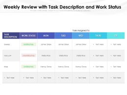 Weekly Review With Task Description And Work Status