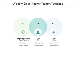 Weekly Sales Activity Report Template Ppt Powerpoint Presentation Summary Information Cpb
