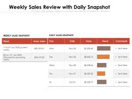 Weekly Sales Review With Daily Snapshot