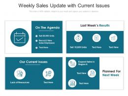 Weekly Sales Update With Current Issues