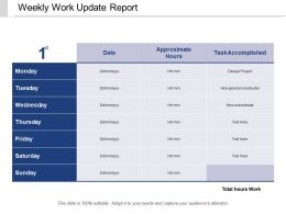 Weekly Work Update Report