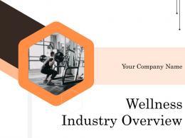 Wellness Industry Overview Powerpoint Presentation Slides