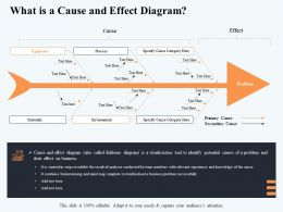 What Is A Cause And Effect Diagram Category Here Ppt Powerpoint Presentation Template