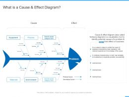What Is A Cause And Effect Diagram Ppt Powerpoint Presentation Professional Templates