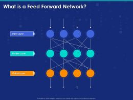 What Is A Feed Forward Network Ppt Powerpoint Presentation Icon File