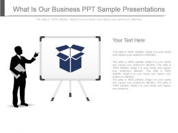 What Is Our Business Ppt Sample Presentations