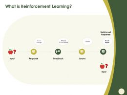 What Is Reinforcement Learning Response Ppt Powerpoint Presentation Gallery Clipart