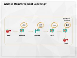 What Is Reinforcement Learning Wrong Ppt Powerpoint Presentation Outline Template