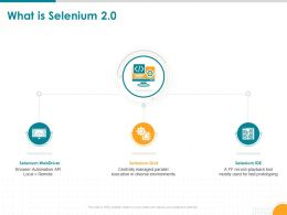 What Is Selenium 2 0 Diverse Environments Powerpoint Presentation Pictures