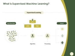What Is Supervised Machine Learning Data Set Ppt Powerpoint Presentation Show Graphics Design