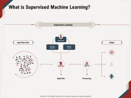 What Is Supervised Machine Learning Input Raw Ppt Powerpoint Presentation Ideas Designs