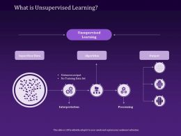 What Is Unsupervised Learning Input Raw Data Ppt Powerpoint Presentation Visuals