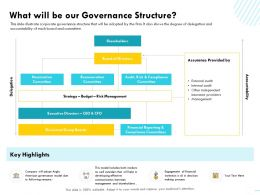 What Will Be Our Governance Structure Other Anglo Ppt Powerpoint Presentation Professional Summary