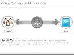 Whats Your Big Idea Ppt Samples