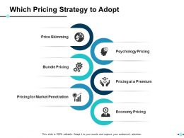 Which Pricing Strategy To Adopt Ppt Slides Graphics