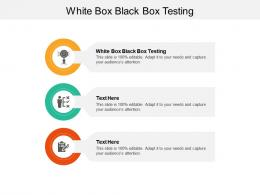White Box Black Box Testing Ppt Powerpoint Presentation Professional Designs Download Cpb