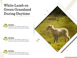 White Lamb On Green Grassland During Daytime