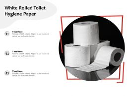 White Rolled Toilet Hygiene Paper