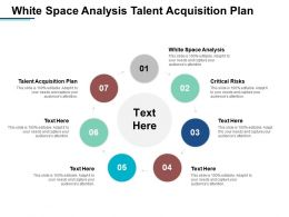 White Space Analysis Talent Acquisition Plan Critical Risks Cpb