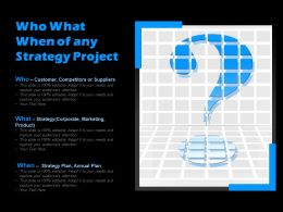 Who What When Of Any Strategy Project