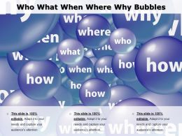 Who What When Where Why Bubbles