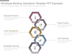 Wholesale Banking Operations Template Ppt Examples