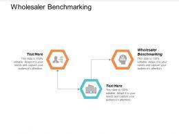 Wholesaler Benchmarking Ppt Powerpoint Presentation Summary Templates Cpb