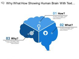 Why What How Showing Human Brain With Text Holders