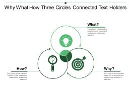 Why What How Three Circles Connected Text Holders