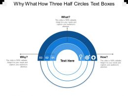 why_what_how_three_half_circles_text_boxes_Slide01