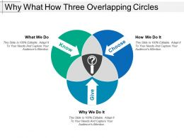 Why What How Three Overlapping Circles