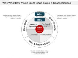 Why What How Vision Clear Goals Roles And Responsibilities
