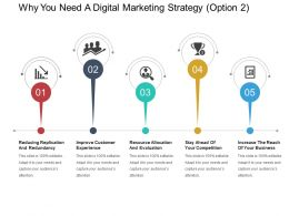 Why You Need A Digital Marketing Strategy Option 2 Ppt Presentation
