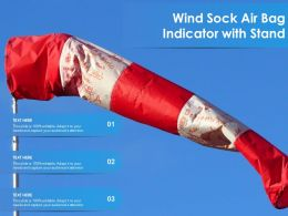 Wind Sock Air Bag Indicator With Stand