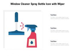 Window Cleaner Spray Bottle Icon With Wiper
