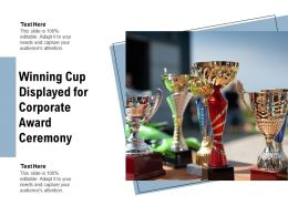 Winning Cup Displayed For Corporate Award Ceremony
