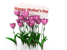 Wishes Of Mothers Day With Tulips Stock Photo
