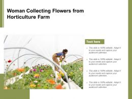 Woman Collecting Flowers From Horticulture Farm