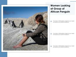 Women Looking At Group Of African Penguin