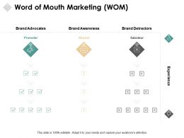 Word Of Mouth Marketing Brand Awareness Ppt Powerpoint Presentation Pictures Topics