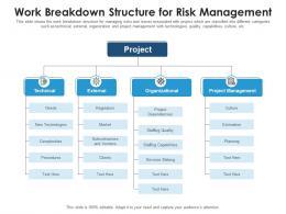 Work Breakdown Structure For Risk Management