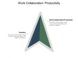 Work Collaboration Productivity Ppt Powerpoint Presentation Icon Format Cpb