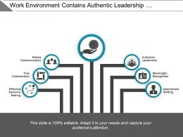 Work Environment Contains Authentic Leadership Appropriate Staffing And Collaboration