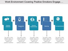Work Environment Covering Positive Emotions Engagement And Accomplishment