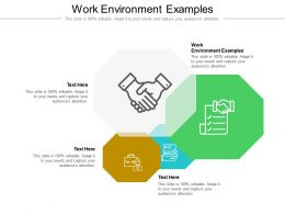 Work Environment Examples Ppt Powerpoint Presentation Ideas Layout Cpb