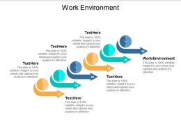 Work Environment Ppt Powerpoint Presentation Slides Graphic Tips Cpb