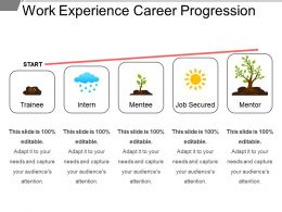 Work Experience Career Progression