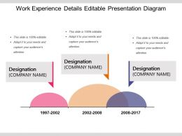 Work Experience Details Editable Presentation Diagram