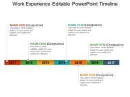 Work Experience Editable Powerpoint Timeline